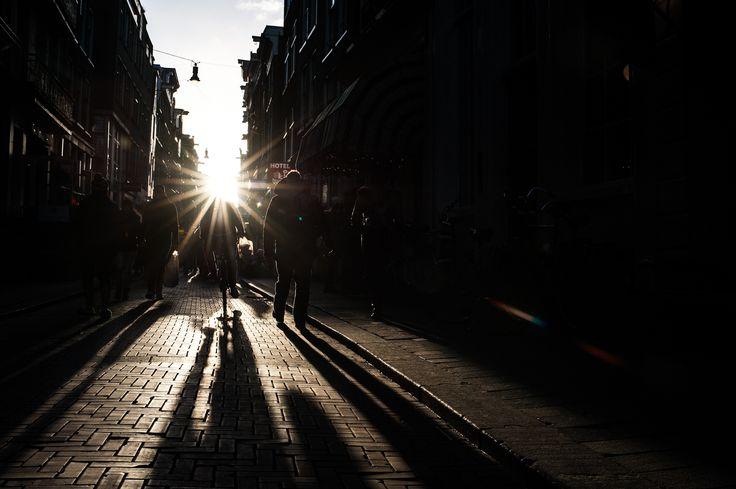 Sunward. by Lukas Schraml on 500px