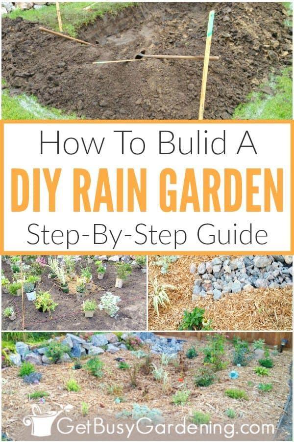 How To Build A Rain Garden Step By Step Rain Garden Rain Garden Design Garden Steps