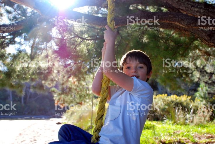 Boy on Rope Swing in Tree by Beach royalty-free stock photo