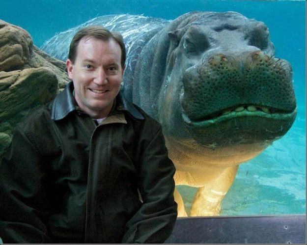 The 35 Greatest Animal Photobombers Of All Time...AWESOME!: Animals, Hippo, Photo Bombs, Funny Stuff, Animal Photobomb, Funny Animal, Smile, Photobombs