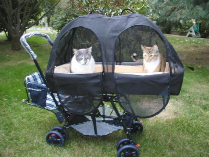 Large Double Dog Stroller