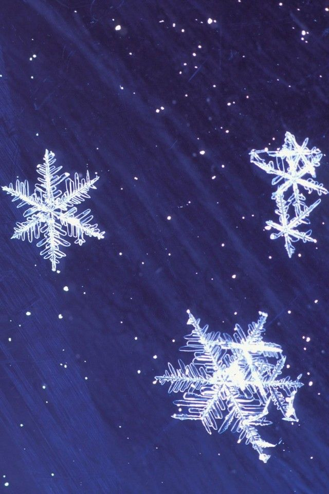 Winter Wallpaper iPhone 6 823 Free HD Wallpaper iPhone X Wallpaper 333477547401414634 9