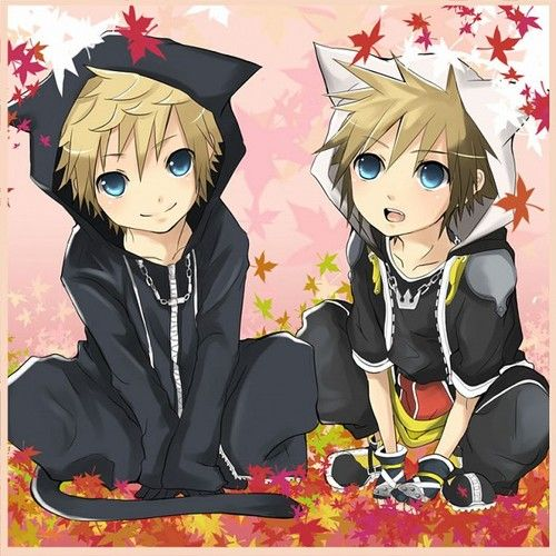 The Yaoi Bond Between Roxas Sora Is Adorable Even If: Cute Roxas Ans Sora Cat Hoodie Pic