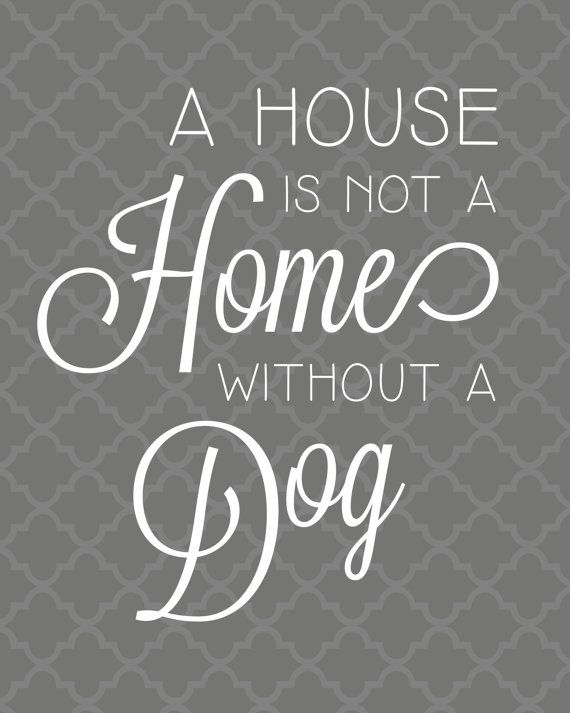 Printable 8x10 Dog Quote - A House is not a Home without a Dog -  Custom Gray Moroccan Print