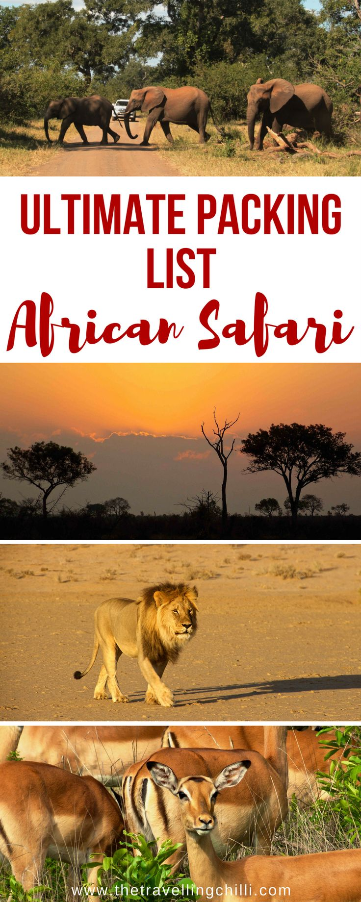 The Ultimate Packing List for an African Safari | African Safari Packing List #africansafari #packinglist
