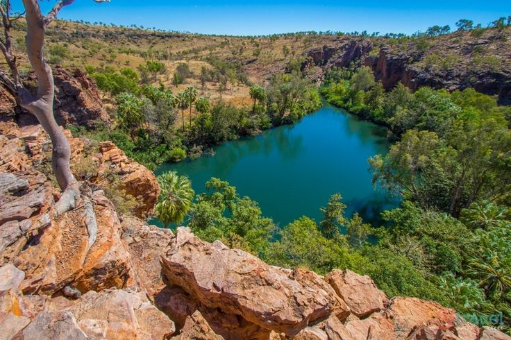 Lawn Hill Gorge in Boodjamulla National Park - one of the best short walks in Australia