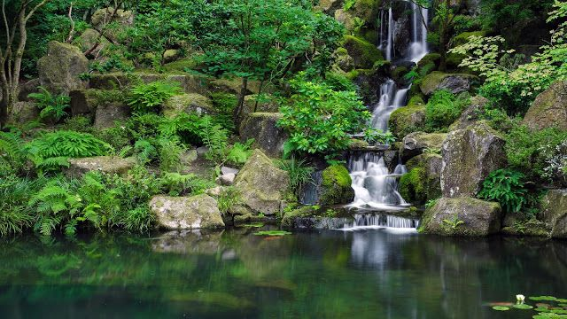 Rocks Waterfall Forest Stones HD Desktop Wallpaper