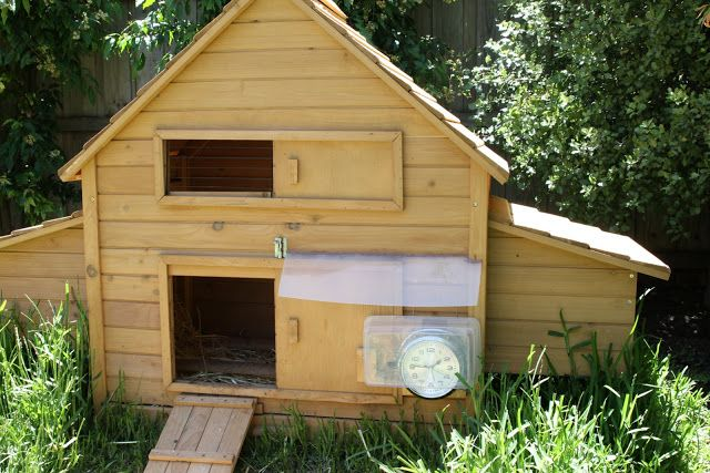 Top 25 Best Automatic Chicken Coop Door Ideas On