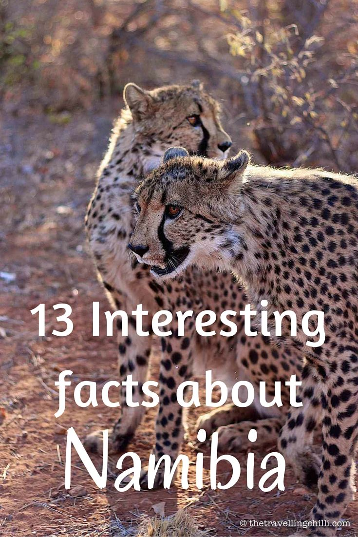 13 Interesting facts about Namibia 13 best