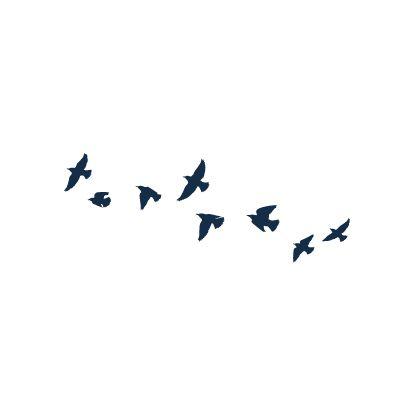 45 best divergent bird tattoo designs images on pinterest for Divergent tris bird tattoo