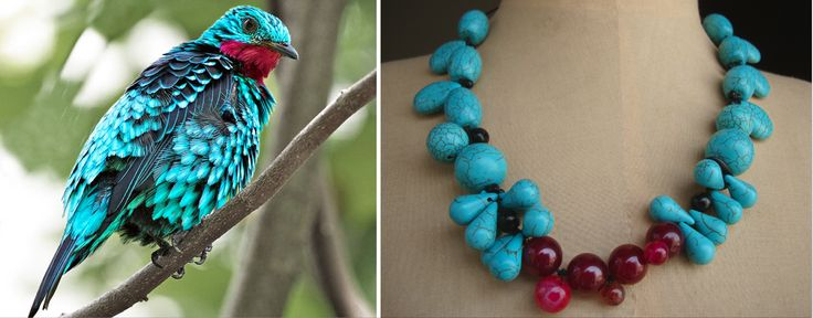 The Spangled Cotinga Necklace