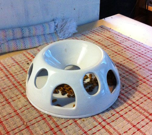 """cat puzzle feeder """"tiger diner"""". could be made with a funnel on a bowl with holes cut out"""