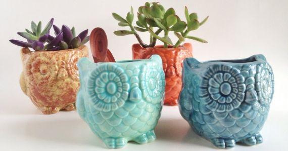 Mint Ceramic Owl Kitchen Bathroom Holder - Owl Plant Pot - Mint Ceramics and Pottery