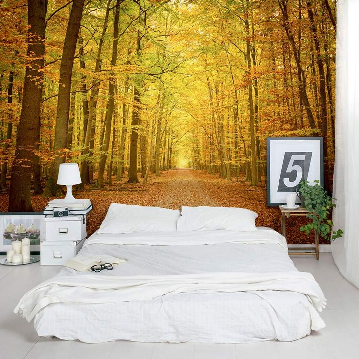 60 best images about herfstachtige slaapkamers on for Autumn forest wallpaper mural