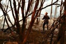 The Beaumaris bushfires of 1944.