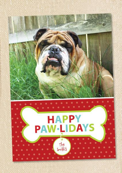 81 best Dog Christmas Cards images on Pinterest   Christmas cards ...
