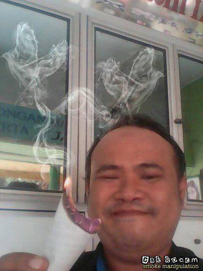 bird smoke manipulation 2 by Cakkocem