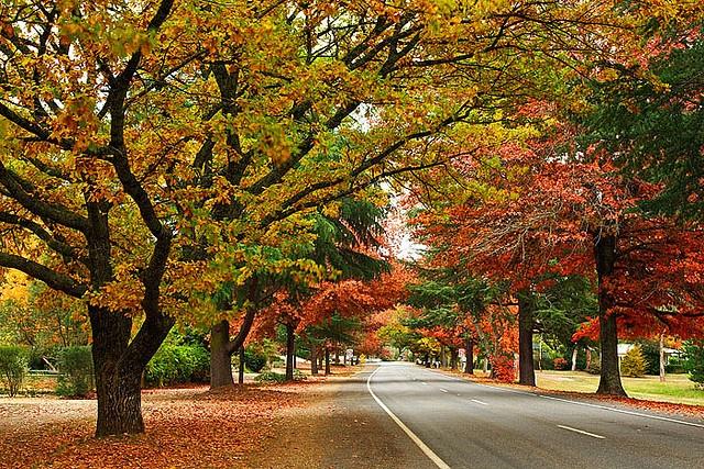 Bright, Victoria, Australia