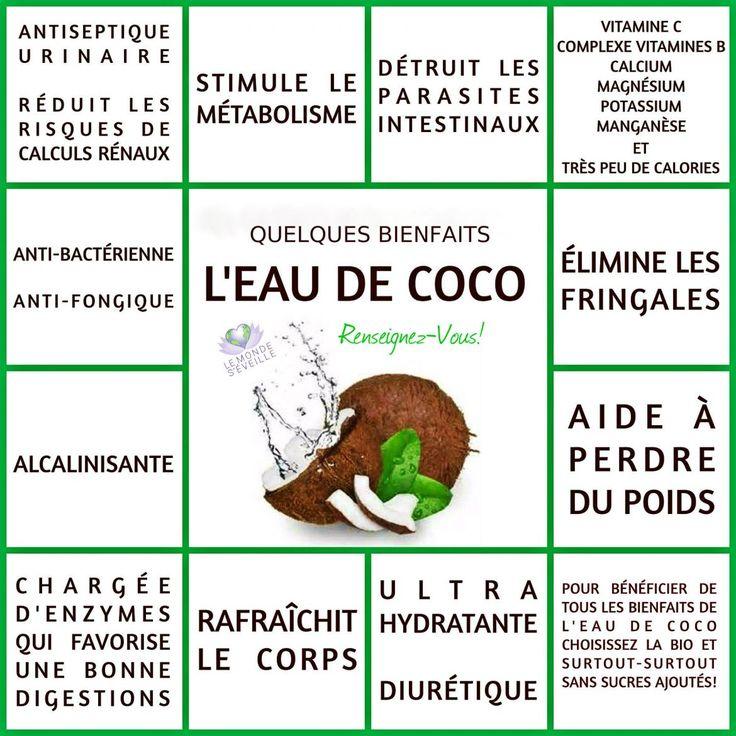 L'EAU de COCO | Le Monde s'éveille