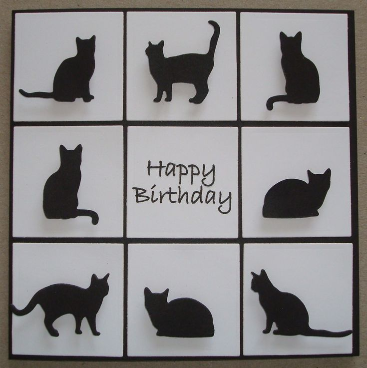 B074 Hand made birthday card using IO Cat Dies