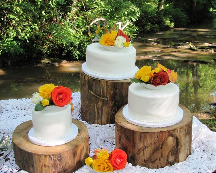 tree cake stand | Tree Stump Stand Wedding Cakes u2014 Round Wedding Cakes : tree stump cake plate - pezcame.com