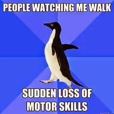 AWKWARD PENGUIN, ANXIETY CAT, and other MEMES