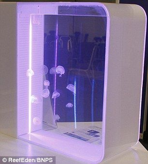 Accessorise: The jelly fish tanks come with multi-coloured LED lights that can be altered to match the decoration of a room and create a living lava lamp effect