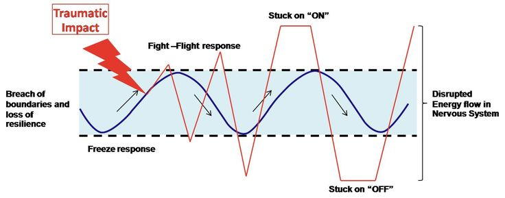 Traumatic stress and the fight, flight and freeze responses of the nervous system