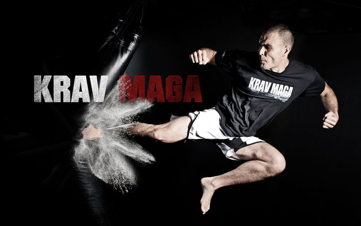 best hand to hand combat system on the planet