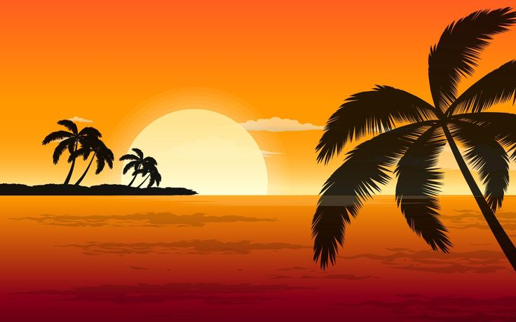 #9307, Free Awesome palm tree pic