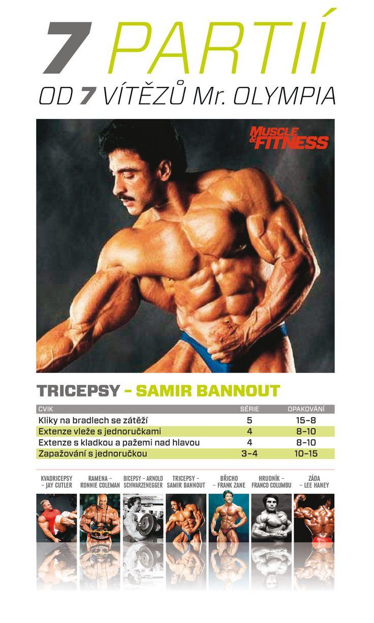 7 partií od 7 víťazov Mr. Olympia  - Samir Bannout a tricepsy.