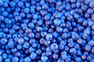GPRS: Health Benefits of BlueberriesPossible healthbenef...