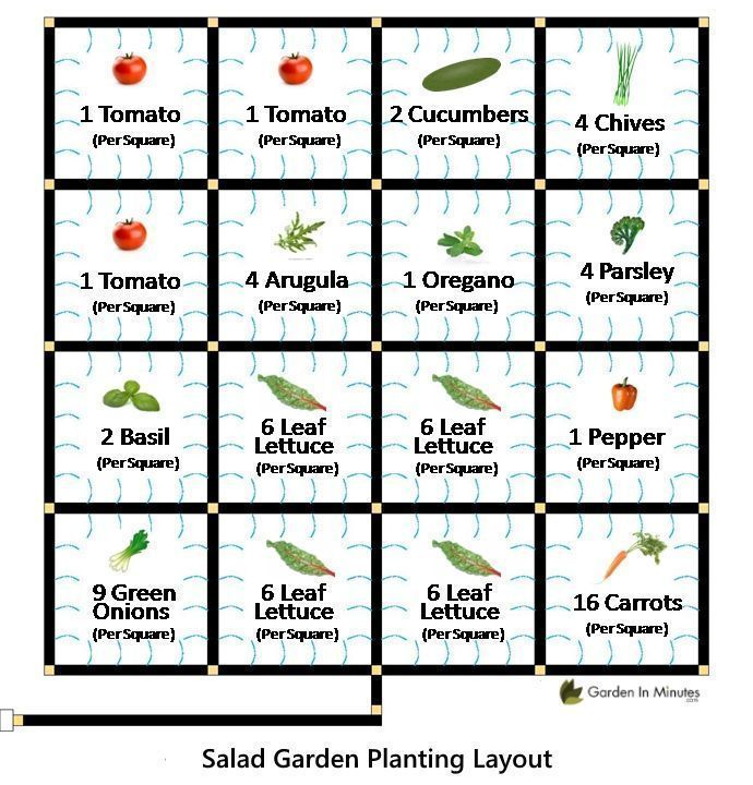 Salad Garden Layout A Grid Planting Guide That Lays Out What And How Much To Plant To Grow The Ingre Garden Layout Vegetable Garden Grid Home Vegetable Garden