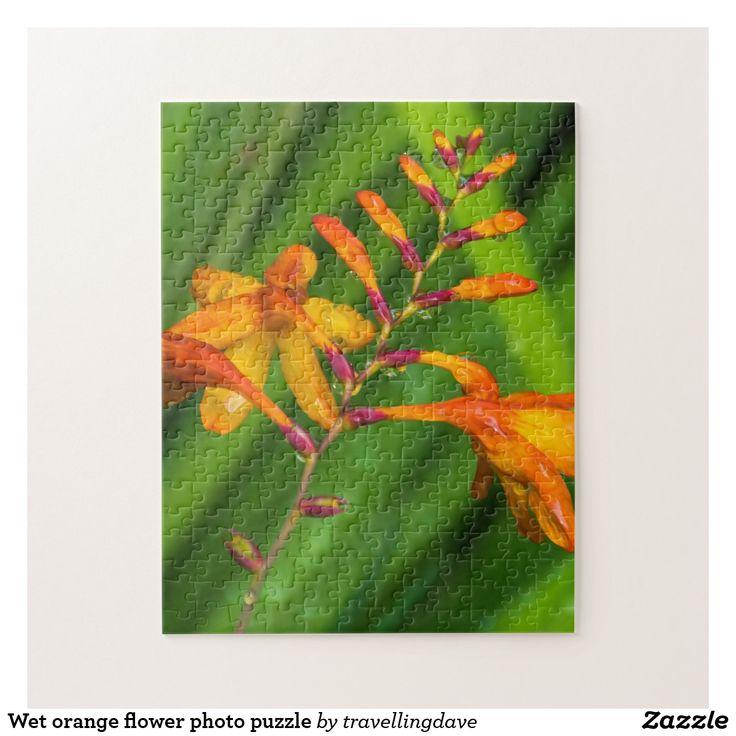 Wet orange flower photo puzzle
