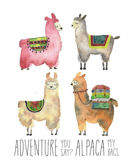 Llama Alpaca Wall Decor Art Print / Adventure Time / Unique Gift / Nursery Decor / Baby Shower / Gift for Her Him / Best Friend Gift