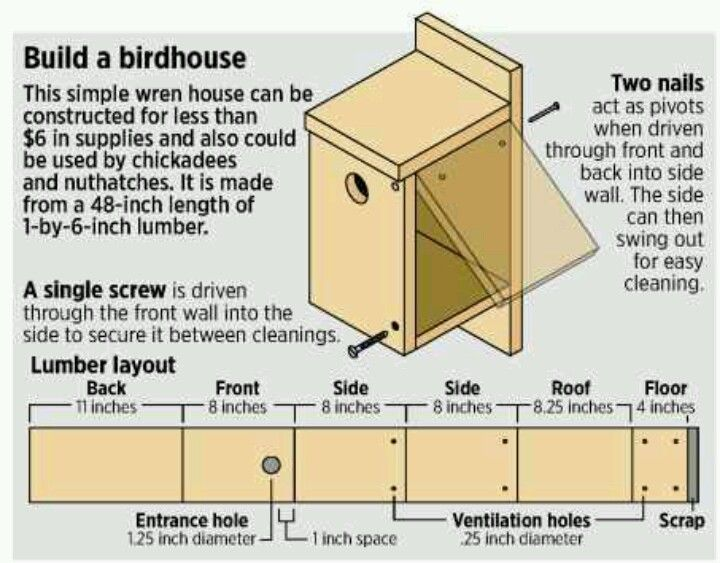 Birdhouse plan for pj cabane d 39 oiseaux et plan Free simple house plans to build