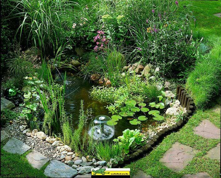 de bassin de jardin végalisée bassins de jardin de bassins bassins ...