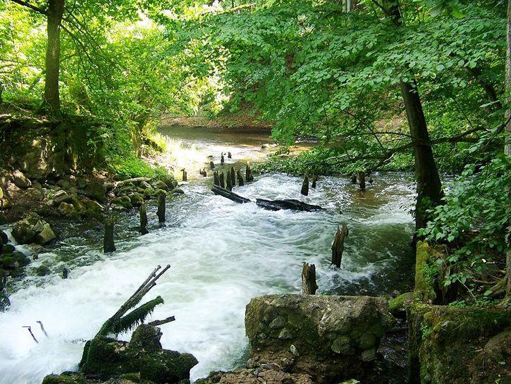 File:Drawienski Park Narodowy - ruiny Wegorni.jpg: Ruiny Wegorni Jpg, File Drawienski Park, National Parks