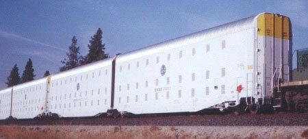 Was this the escape proof loophole closed by FEMA, in 2012, when they ordered 102,000 box cars with shackles?