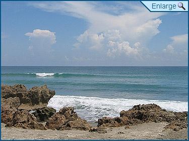 Dog Beach Near Port St Lucie Fl