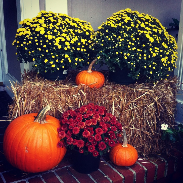 fall hay bale decor maybe below the front window - Halloween And Fall Decorations