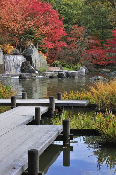 """""""Japanese garden"""" http://vur.me/tbw/Japanese-Garden"""