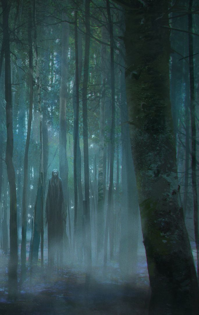 Alone in the Forest by Viktor Titov