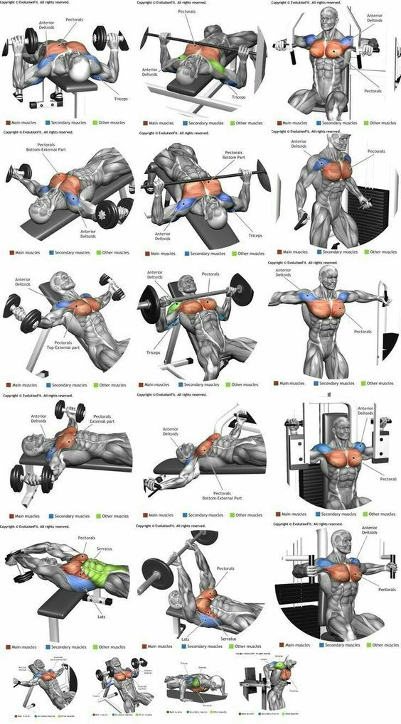 Chest workout at home for strength and mass |Chest