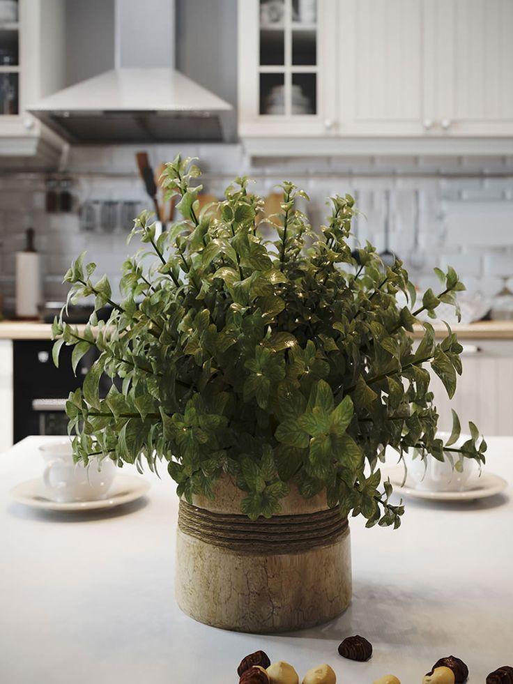 комнатное растение в интерьере