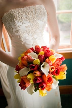 Tulips in yellow, orange and red, mixed with white calla lilies in this round bridal bouquet.