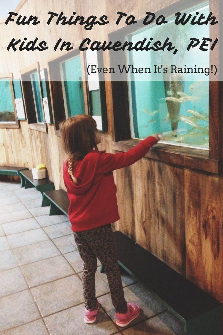 Fun Things To Do With Kids In Cavendish, PEI!