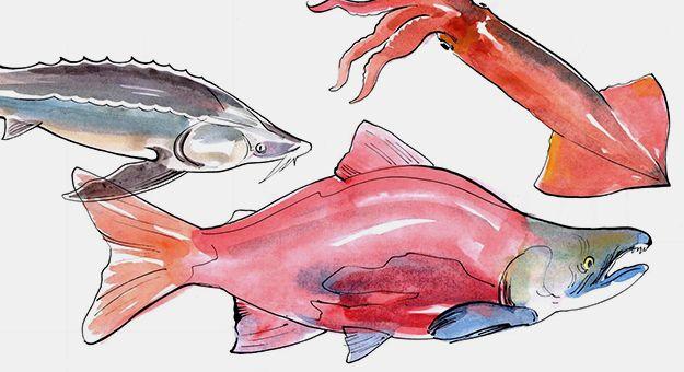 Как устроена кухня ресторана «Волна» и откуда в Москву приходит самая удивительная русская рыба
