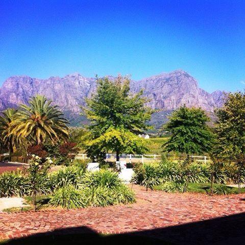 Winetasting | Wine Estate Zorgvliet | Stellenbosch