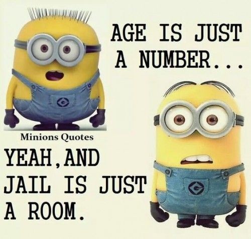 27 Best Minion Puns Images On Pinterest: Best 25+ Very Funny Quotes Ideas On Pinterest